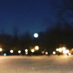 The Moon, Parc Lafontaine